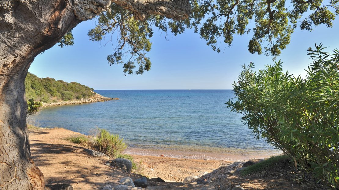 location villa de luxe domaine d'araso les pieds dans l'eau avec piscine et accès direct plage corse du sud