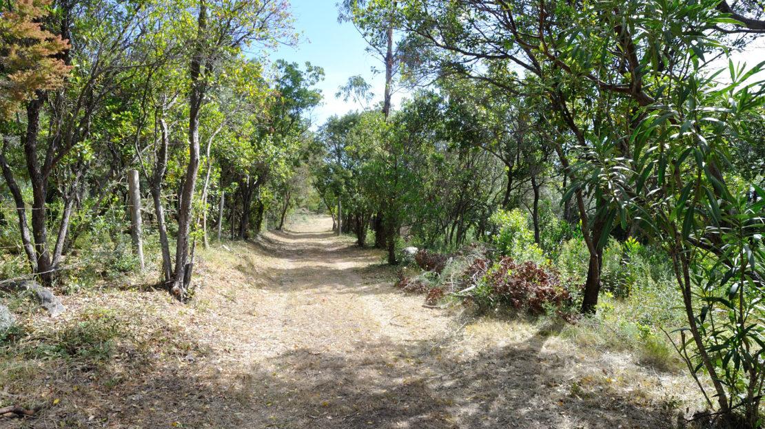 terrain vue mer pinarello corse du sud