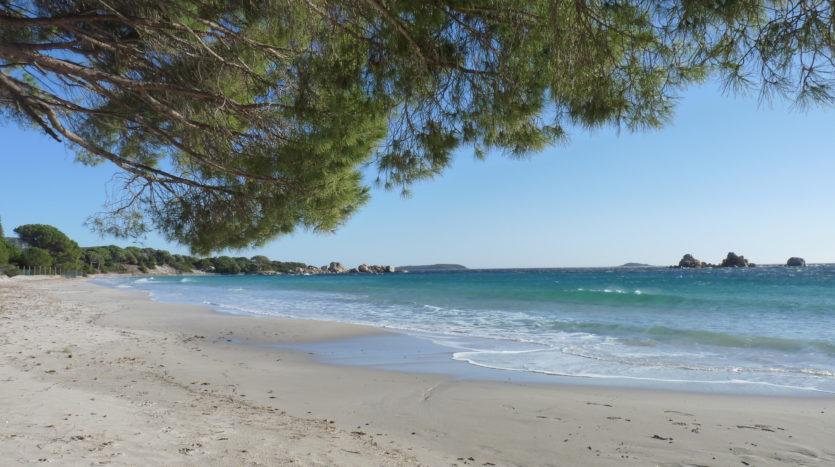 plage palombaggia vente et location de villas delta immobilier