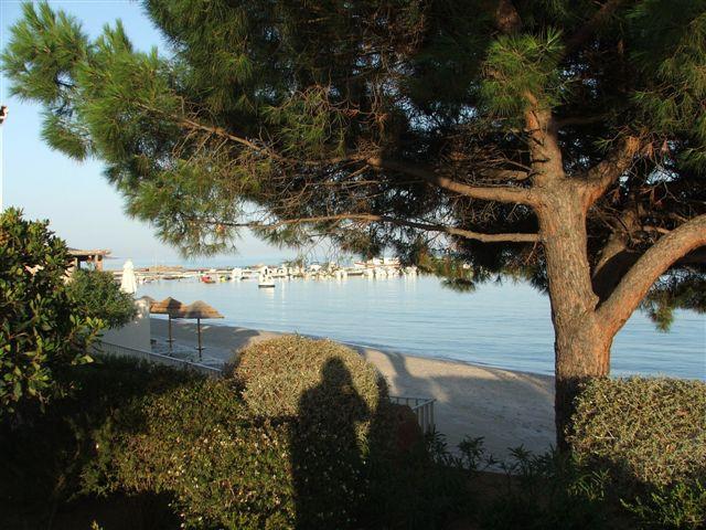 vente- appartements face à la mer - à 100 m de la plage-
